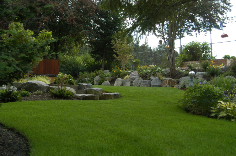 2 Ways to Create the Lawn of Your Dreams